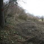 Vyrovnáno a pokáceno - ...zejména pochozí terasa nad záplavovým územím,...