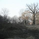Budování Toušeňské zahrady - Severní svah stíní polovinu pozemku