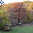 Barevný podzim v sadu - Podzim v Toušeňské zahradě rozhodně není smutný...